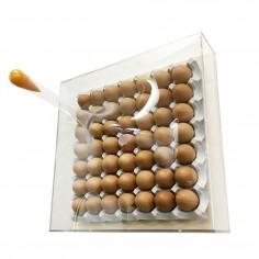 「super egg pack 」